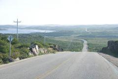 6-00 AM Tuesday - Labrador Rush Hour.jpg