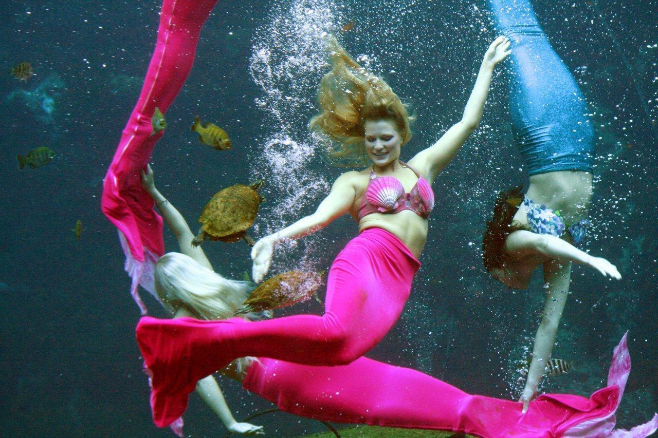 Mermaid Heather