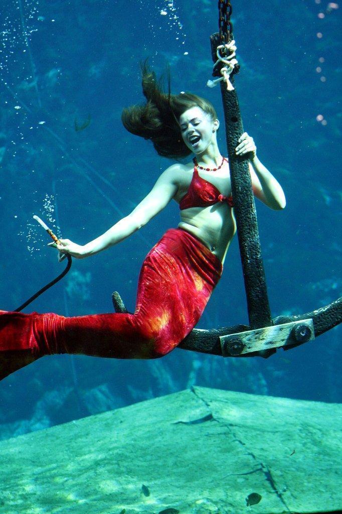 Mermaid Shannon 2008