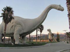 Desert Dinos