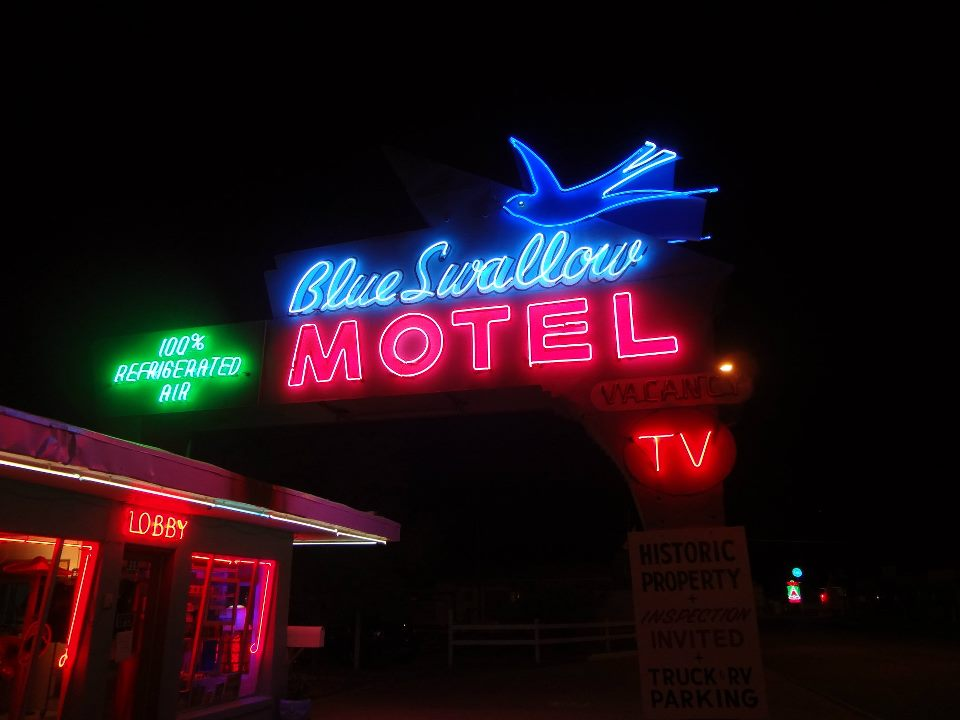 Blue Swallow Neon at Night