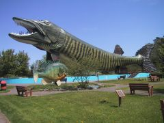 Big Musky May 2008