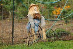 Vandalia Scarecrow Cover