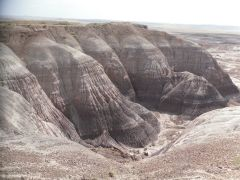 Painted Desert/Petrified Forrest