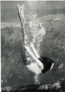 Barbara Wynns Diving