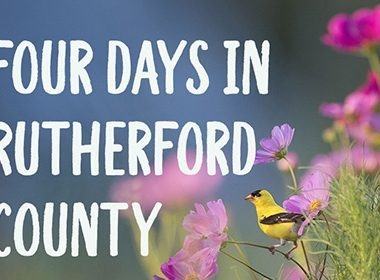 4 Days In Rutherford County